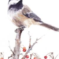 Chickadee On A Stick Art Prints & Posters by Sharon Morgio