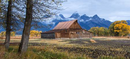 Moulton Barn Fall Scenic