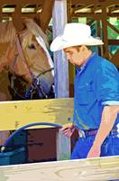 Stable Chores