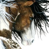 """Majestic Pintaloosa Horse"" by AmyLynBihrle"