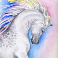 Rainbow Arabian Art Prints & Posters by Evey Studios