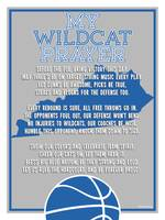 kentucky wildcat basketball