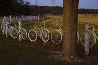 Bicycle fence 2