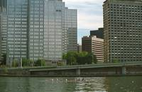 Pittsburgh Skyline and River 2001