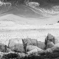 Beach Art Black and White by Karen Adams