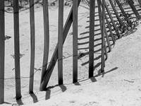 Beach Fence Shadows Black and White