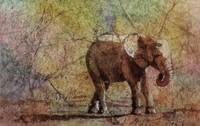 Elephant watercolor batik painting on rice paper