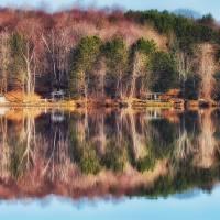 November Reflection by Lisa Rich