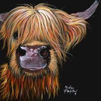Scottish Highland Cow 'HENRY' By Shirley MacArthur