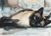 Beautiful Siamese Cat Watercolor