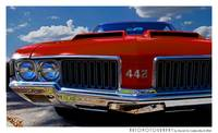 1970 Oldsmobile 442 Color Poster