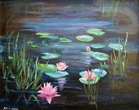 Pink Waterlilies