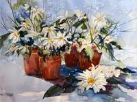 Daisies and Pots