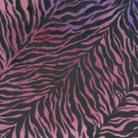 Purple Zebra Art Prints & Posters by Nan Wright