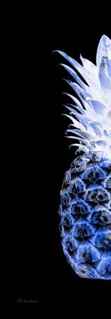 14JL Artistic Glowing Pineapple Digital Art Blue