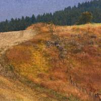 pattern on idaho hillside  by r christopher vest