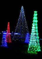 St Louis Botanic Gardens Christmas Lights Study 4