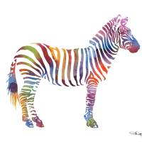 """Zebra"" by k9artgallery"