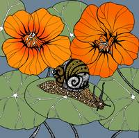 Snail with Nasturtiums