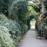 Parisian Secret Garden Art Prints & Posters by Rachel White