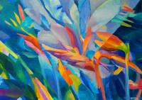 Abstract Flowers Floral Plants Garden Blue Orange