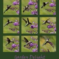 Hummingbird Garden Delight Green by Karen Adams
