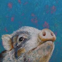 """""""Baby Pig"""" by creese"""
