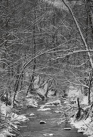 """A Snowy Day at the Creek"" #1"