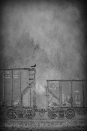 """""""Two Freight Train Cars"""" Asheville, NC"""