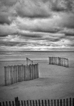 """""""Beach Fence"""""""