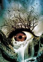 Cascade Crying Eye