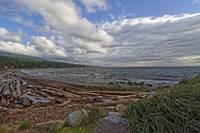 Sunshine Coast 16 November 2010 by Priscilla Turner
