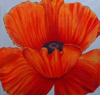 Orange poppy(Acrylic)