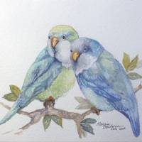 """PETE AND REPETE 2 PARAKEETS"" by MBaldwinFineArt2006"
