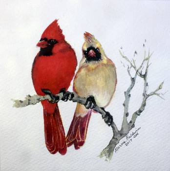 Sassy Pair Cardinals By Marcia Baldwin