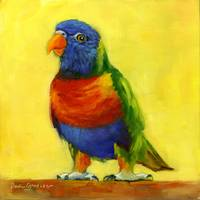 #10 Rainbow Lorikeet