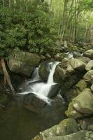 Unknown waterfall in the Smokies.