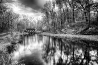 Autumn Pond in Black and White by Jim Crotty