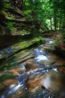 Early July in Hocking Hills by Jim Crotty