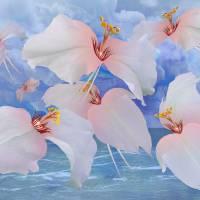 Avian Flowers  by I.M. Spadecaller