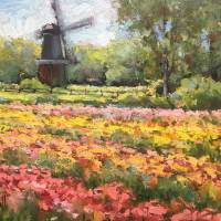 """Holland Michigan Tulips in Bloom"" by lindseytull"