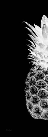 14TL Artistic Glowing Pineapple Digital Art Black