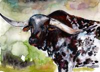 Texas Longhorn Portrait Watercolor