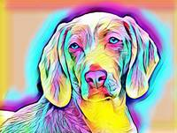 Dog Modern Pop Art