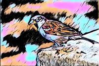 Bird Pop Art Comic