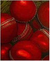 cricket balls for sale!