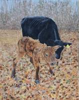 Calf and Mom