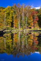 Autumn Reflection Vertical by Cody York_N2Q9146-