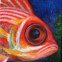 Squirrelfish Eye