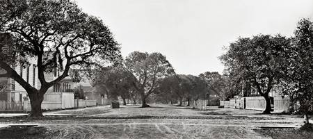 oak_oaks_Alice-12th-street_sep-p